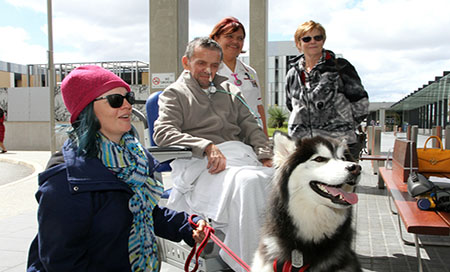 Man in wheelchair in front of dog, surrounded by family and staff
